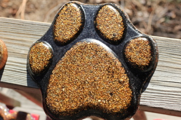 More orgonite charging plates – orgonite for pets – or maybe